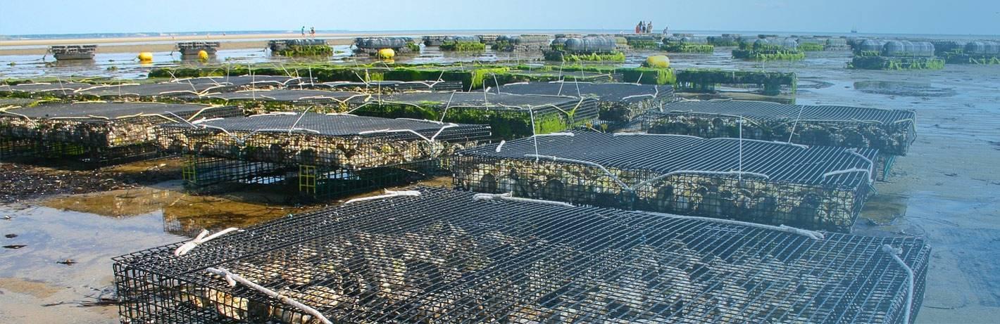 Les meilleurs matériels, matières et produits pour vos projets aquaculture.